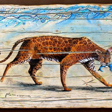 """""""Nei capanni da pesca, manti di giaguaro usati come reti"""" Click"""