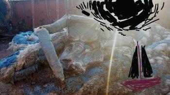 giacomino taurozzi morto