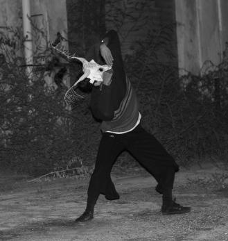 Darsena Ravenna performance 14