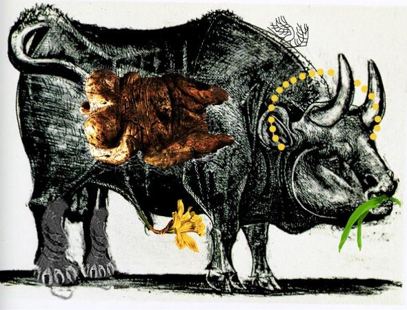 intervento Bacco Artolini opera arte Picasso toro