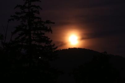 luna piena di vita
